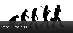 флеш Эволюция