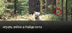 играть online в Найди кота