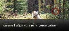 клевые Найди кота на игровом сайте