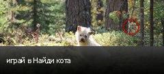 играй в Найди кота