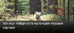 топ игр- Найди кота на лучшем игровом портале