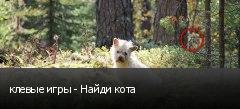 клевые игры - Найди кота