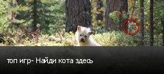 топ игр- Найди кота здесь