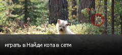 играть в Найди кота в сети