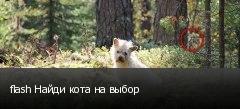 flash Найди кота на выбор