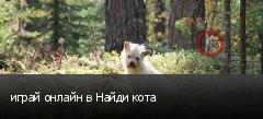 играй онлайн в Найди кота