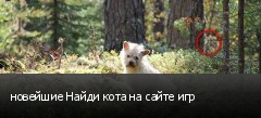 новейшие Найди кота на сайте игр