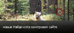новые Найди кота на игровом сайте