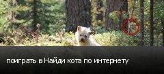поиграть в Найди кота по интернету