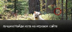 лучшие Найди кота на игровом сайте