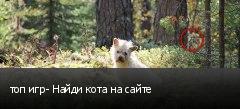 топ игр- Найди кота на сайте