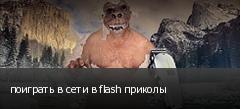 поиграть в сети в flash приколы