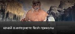качай в интернете flash приколы