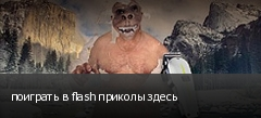поиграть в flash приколы здесь