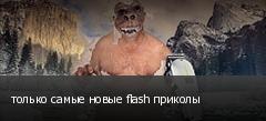 только самые новые flash приколы