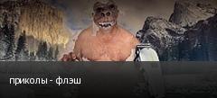 приколы - флэш