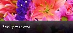 flash Цветы в сети