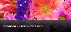 скачивай в интернете Цветы