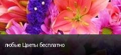 любые Цветы бесплатно