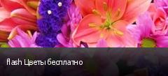 flash Цветы бесплатно