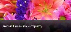 любые Цветы по интернету
