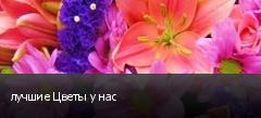 лучшие Цветы у нас
