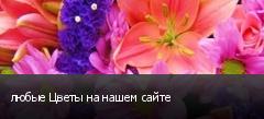 любые Цветы на нашем сайте