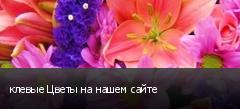 клевые Цветы на нашем сайте