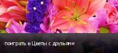 поиграть в Цветы с друзьями