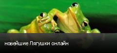 новейшие Лягушки онлайн