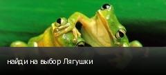 найди на выбор Лягушки