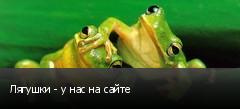Лягушки - у нас на сайте