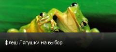 флеш Лягушки на выбор