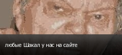 любые Шакал у нас на сайте