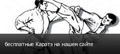 бесплатные Каратэ на нашем сайте