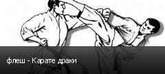 флеш - Карате драки