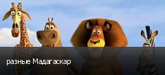 разные Мадагаскар