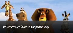 поиграть сейчас в Мадагаскар