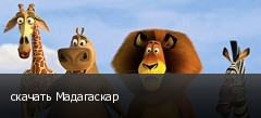 скачать Мадагаскар