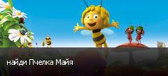 найди Пчелка Майя