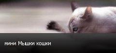 мини Мышки кошки