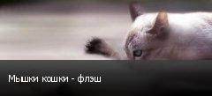 Мышки кошки - флэш