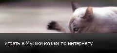 играть в Мышки кошки по интернету