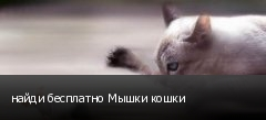 найди бесплатно Мышки кошки