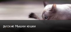 русские Мышки кошки