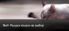 flash Мышки кошки на выбор