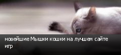 новейшие Мышки кошки на лучшем сайте игр