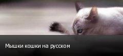Мышки кошки на русском