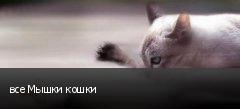 все Мышки кошки