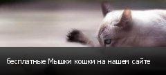 бесплатные Мышки кошки на нашем сайте